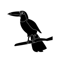 toucan bird animal cartoon icon image vector image vector image