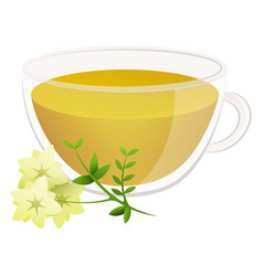 delicious natural tea with fragrant herbs in a vector image