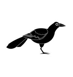 Exotic bird animal cartoon icon image vector