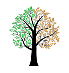 green and brown leaf on tree vector image