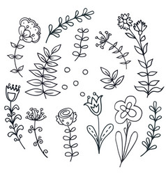 Hand drawn floral set with leaves flowers vector