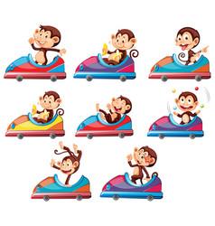 Set monkeys riding on toy car vector