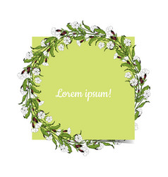 white campion flowers round wreath on white vector image