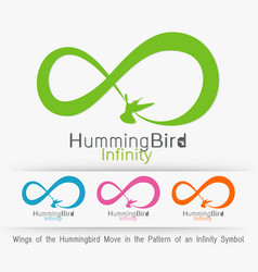 Wings of the hummingbird move in the pattern of vector