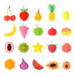 set with various fruits vector image