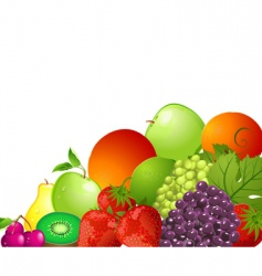 bright fruit vector image