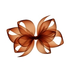 Brown Bow Top View Close up on Background vector image