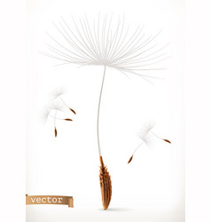 dandelion seeds 3d icon vector image
