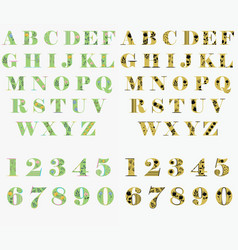 floral green and yellow letters and numbers vector image
