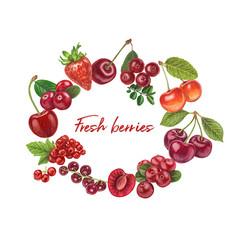 Fresh berries hand drawn vector