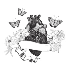 Human anatomical heart whit flowers vector