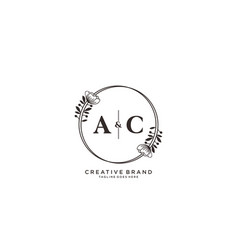 Initial ac letters hand drawn feminine and floral vector