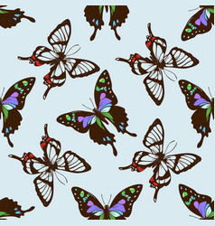 Seamless pattern with hand drawn colored graphium vector