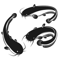Set catfish in engraving style design vector