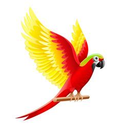 budgerigar parrot ara waving vector image vector image