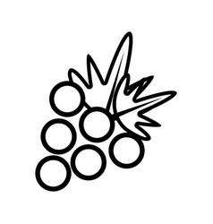 figure delicious grape fruit icon vector image vector image