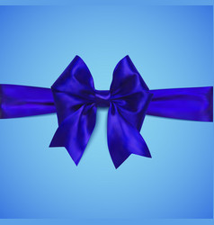 decorative blue bow with horizontal ribbon vector image