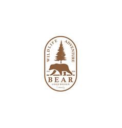 bear logo for vintage badge adventure travel vector image