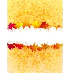 Colorful autumn leaves on a old paper plus EPS10 vector image