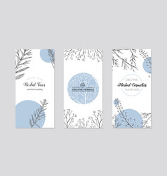 Leaflets with healing herb plants vector