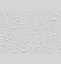 Seamless pattern of water drops on a white back vector