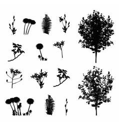 Set plant tree foliage elements silhouette vector