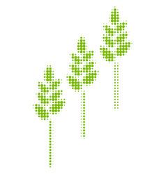 Wheat plants halftone icon vector