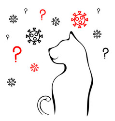 Cat virus contamination can our pet have covid19 vector