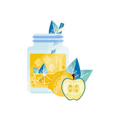 Glass jar with apple-lemon cocktail ice cubes and vector