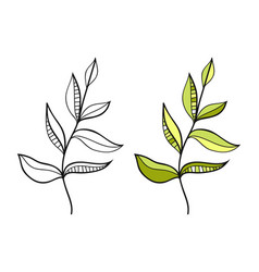Leaf black and white for coloring vector