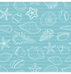 Pattern of white sea shells stars stones vector