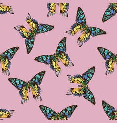 seamless pattern with hand drawn colored urania vector image