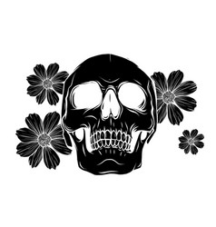 skull with flowers isolated vector image