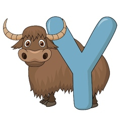 Alphabet Y with yak cartoon vector image
