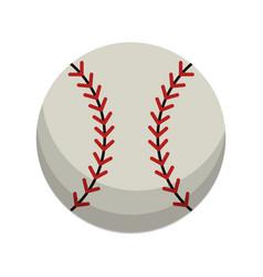 Ball baseball sport equipment vector