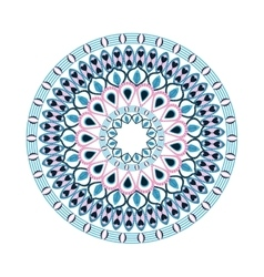 colorful intricate mandala icon vector image