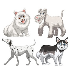 Different kind of canine vector