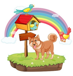 Dog and birdhouse vector image