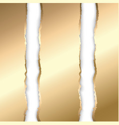 gold and white torn paper template background vector image