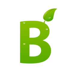 green eco letter b illiustration vector image