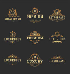 Luxury monograms logos templates objects vector