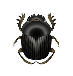 Scarab geotrupidae dor-beetle sketch of dor vector