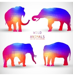 set colorful geometric silhouettes elephant vector image