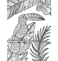 Toucan detailed vector image