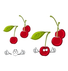 Cartoon juicy red cherries fruits vector image