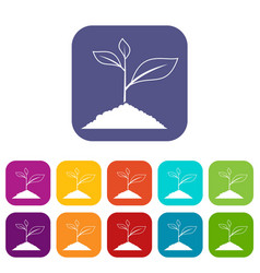 Growing plant icons set vector
