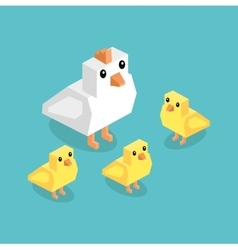 Isometric White Chicken with Yellow Chick Isolated vector image vector image