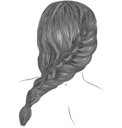 Plait hair vector