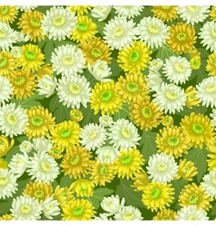Seamless yellow white chrysanthemum backgrounds vector image