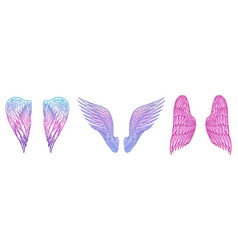 set angel wings in vintage style template vector image
